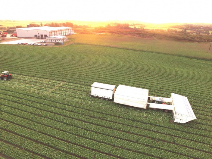 Business Profile – John B. Dockrell Ltd Require a Crop Production Manager in Wexford