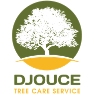 Djouce Tree Care
