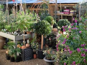 Business Profile – Howbert & Mays Gardens are Seeking Enthusiastic and Knowledgeable Staff