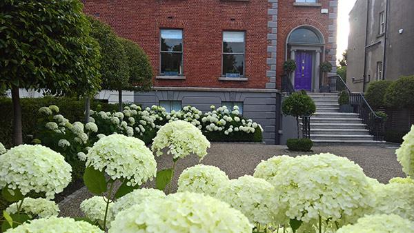 Business Profile – Noel Dempsey Landscaping are Seeking a Landscape Gardener